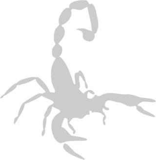Наклейка гравировочная на окно   Scorpio   цвет серебристый металик