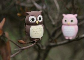 Флешка подарочная Bone Owl Driver 8 ГБ коричневый совенок