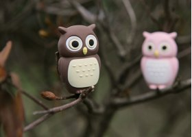 Флешка подарочная Bone Owl Driver 4 ГБ розовая сова